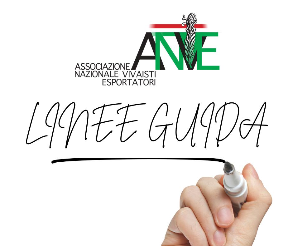 Linee Guida ANVE 2020